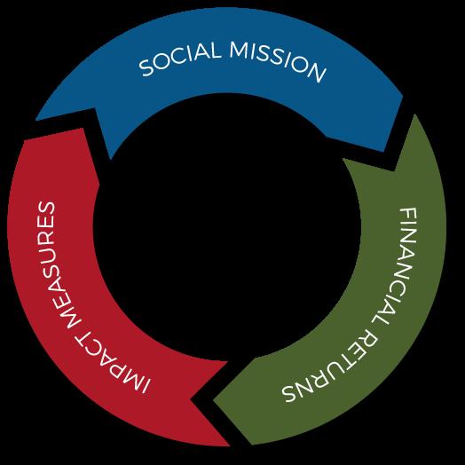 Masa-Impact-Portfolio-Circle
